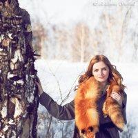 Портрет. Лиса_1 :: Ekaterina Stafford