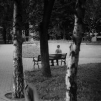 тишина :: Ольга Лукьяненок