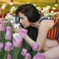 Запахи лета :: Дмитрий Вдовин