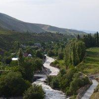 Река :: Olga Pomozova