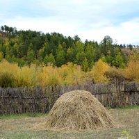 Осень :: Олег Прус