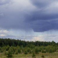 дождь :: Ирина Федорова