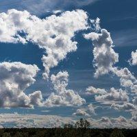 Небесные иероглифы :: Valery Penkin