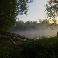 Уютное место :: Александр Головко