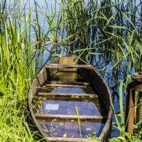 Всеми забытая лодка :: Alexandra Brovushkina