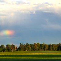 """""""...как не прочны эти радуги и тучи, эти летние дожди..."""" :: liudmila drake"""