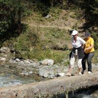 Форсирование горной реки-упражнения на бревне :: Vladimir 070549