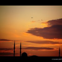 güneşin doğuşu :: Selman Şentürk