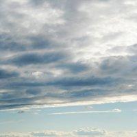 Яхта на Северной Двине :: Дарья Личутина