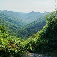 Кавказ :: Андрей Воробьев