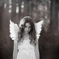 Ангел :: Анастасия Цареградская