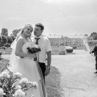 Свадебное фото под дождем :: Сергей Гаварос