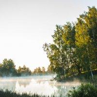 Туманное озеро :: Павел Данилевский