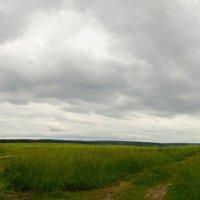 Русское поле :: Вячеслав Печенин