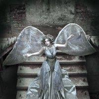 """Серый ангел"" :: Анастасия Ларионова"