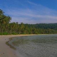 Остров Ко-Лан :: ylwkoda Шкодина