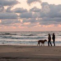вечерняя прогулка по берегу северного моря.. :: Надежда Шемякина