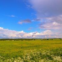 Небо :: Алёнка Шапран