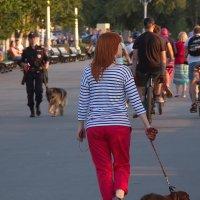 Девушки с собаками. Разное мировозрение :: Арсений Корицкий