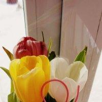 Тюльпаны. :: Екатерина