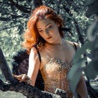 черный ангел :: Елена Суксина
