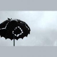 зонт :: sv.kaschuk