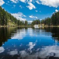 Озеро :: Sergey Oslopov