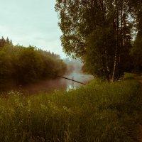 Два пути :: Светлана Шмелева