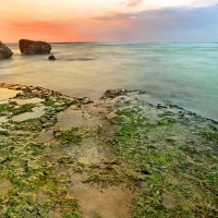 Морское побережье :: Александр Ихиритов