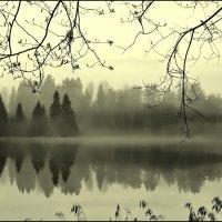 Тишина. :: Екатерина Артамонова