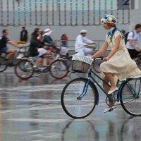 Леди на велосипеде :: Анастасия Смирнова