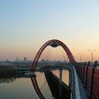 Живописный мост. Арка :: Анатолий Губарев