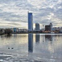 Минск в холодных тонах :: Светлана З