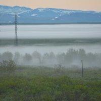 Туман. :: Николай Емелин
