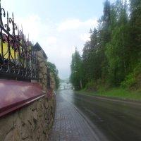 После дождя :: Вячеслав Устинов