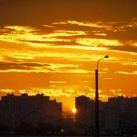 апельсиновый закат :: Aleksandr Zubarev