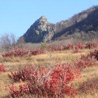Орлиные скалы :: Vladimir 070549
