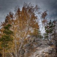 на горе Стрельная,под Тольятти 4 :: сергей агаев