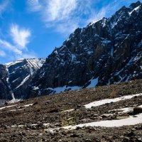 Перья над горами :: Денис Соломахин