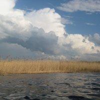 У озера :: Вита Чернышева (CheVita)