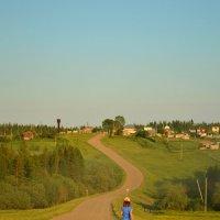 Дорогу осилит идущий... :: Евгения Семененко