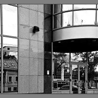 городское отражение :: ник. петрович земцов