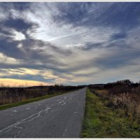 Пустынная осеняя дорога., бегущая в даль :: Vadim WadimS67