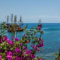 На пиратских берегах 5 :: Александр Хорошилов