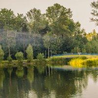 Все тот же парк..июнь. :: Anna Stepanyuk