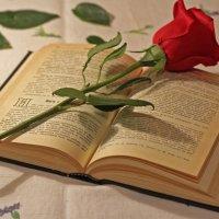Чтение Библии... :: Наталья