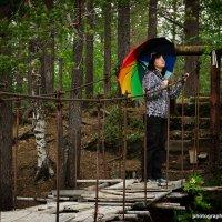 Музыка дождя :: Алиса Кондрашова
