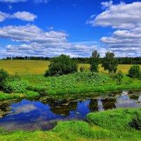 Хорошая погода :: Андрей Куприянов