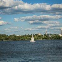 Воронежское водохранилище :: Лариса