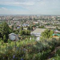 САРАТОВ_город на Волге_июнь :: Андрей ЕВСЕЕВ